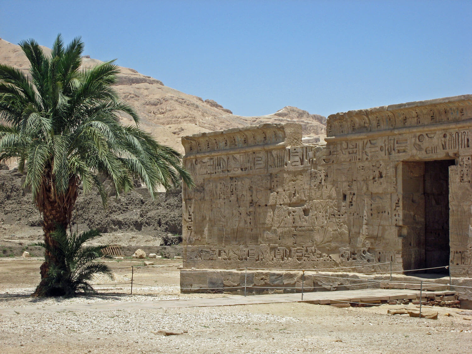 egypt-luxor-temple-palm-tree-sahara-desert.jpg