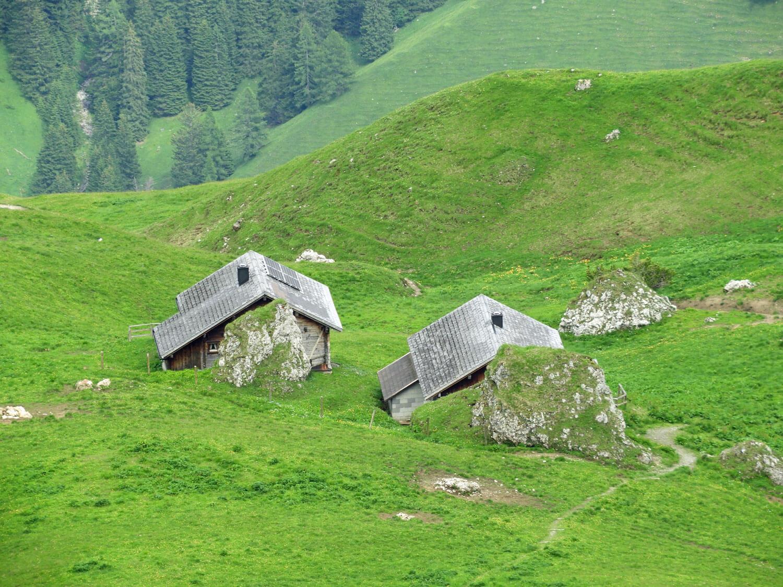 liechtenstein-malbun-valley-summer-chalet-grass-green.jpg