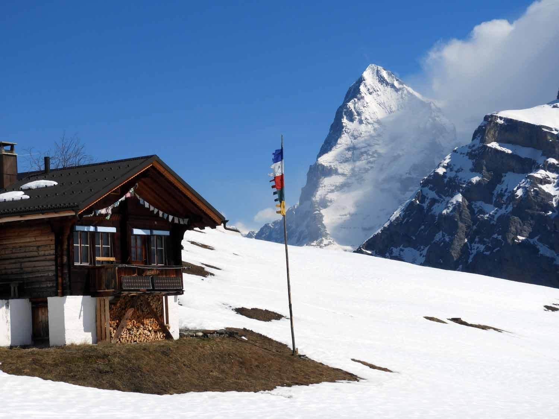 switzerland_murren_winter_sledding_snow_sledge_eiger_flag_wonderland_swiss.JPG