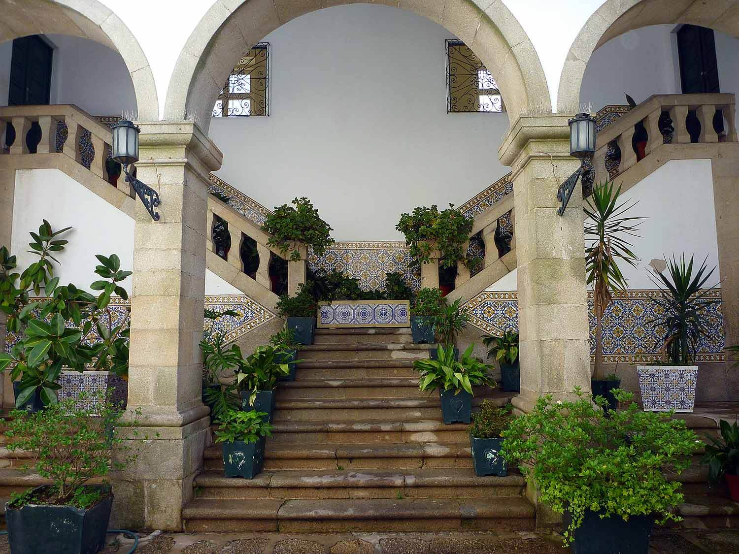 portugal-guimaraes-house-entrance-plants.JPG