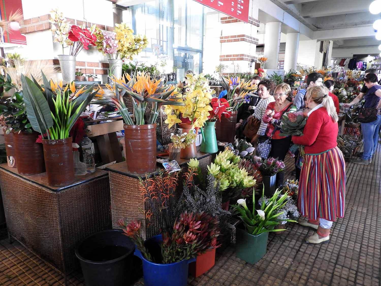 portugal-madeira-island-funchal-flower-market.JPG
