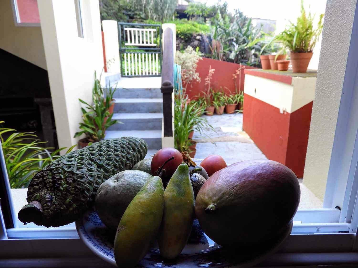 portugal-madeira-island-arco-sao-jorge-town-north-side-village-fruit-window.jpg