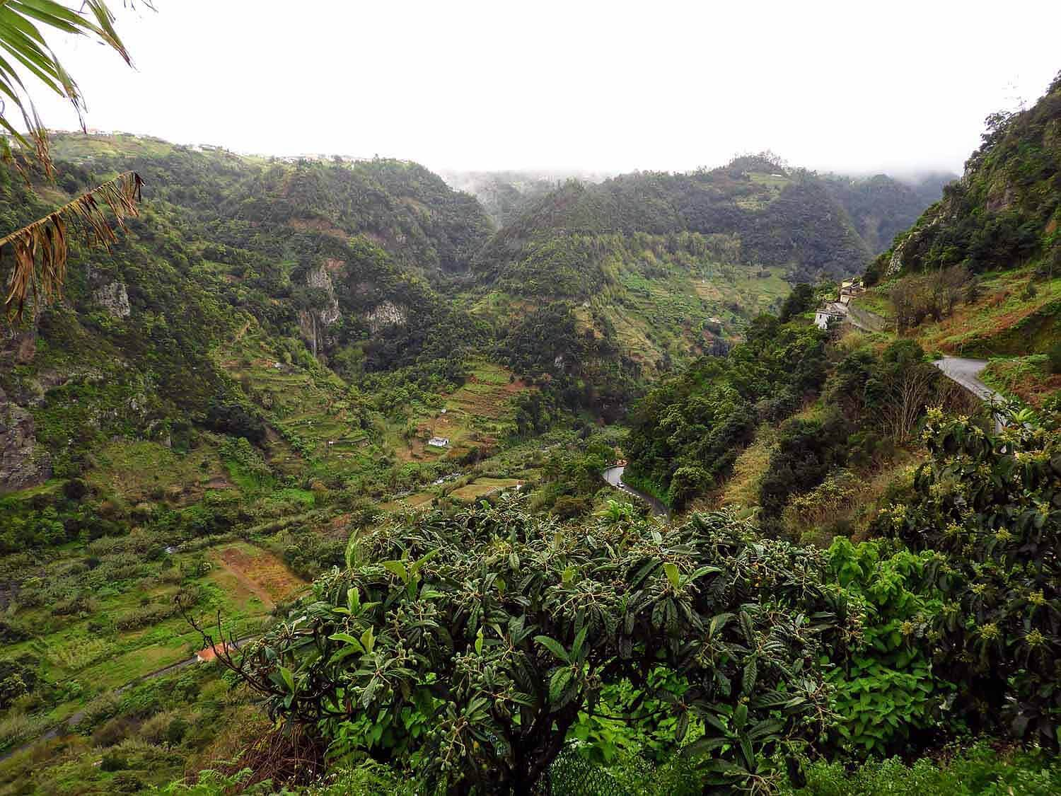 portugal-madeira-island-greenery-mountains-forest-rainy-north-side-village-waterfall.jpg