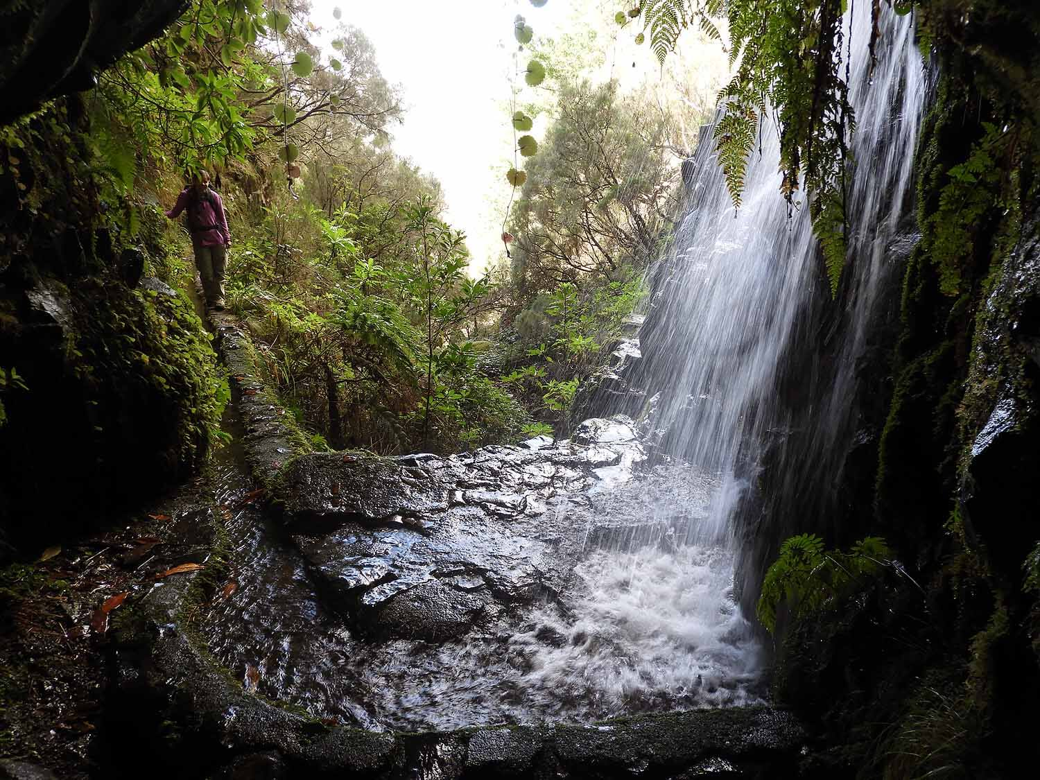 portugal-madeira-levada-25-fonts-curvy-canal-water.JPG