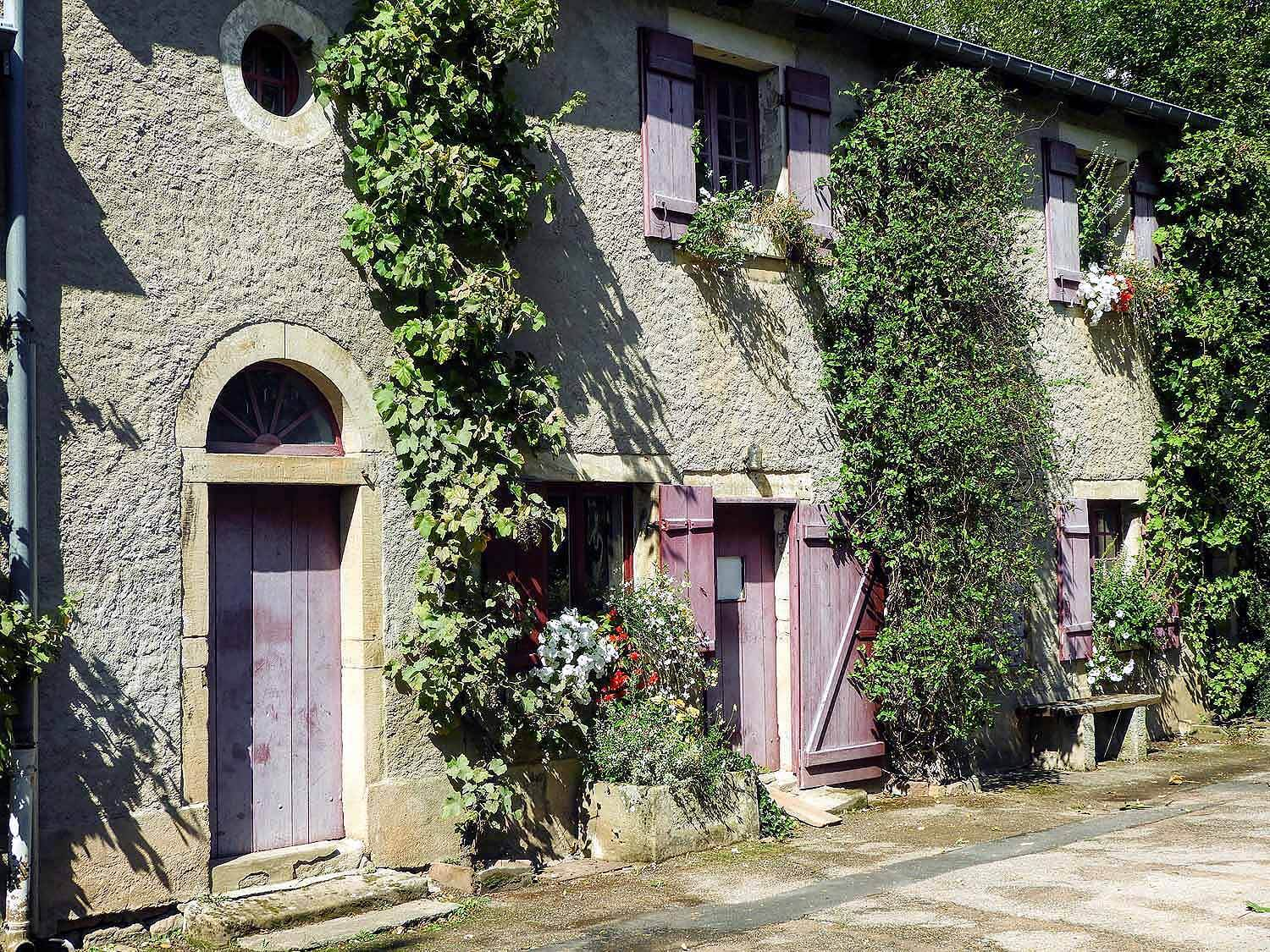 france-epinal-vines-doors.jpg