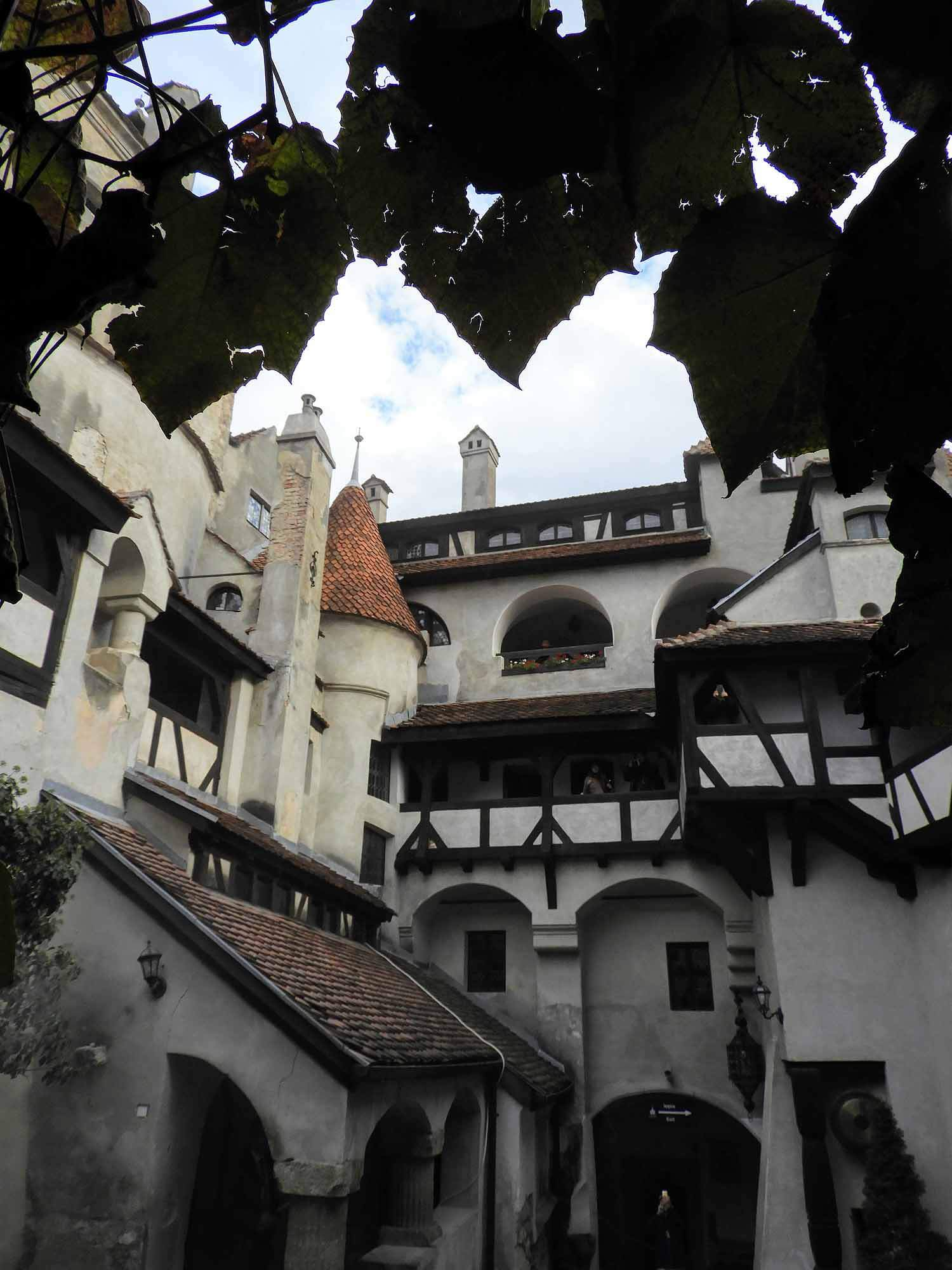 romania-bran-castle-courtyard-vines.jpg
