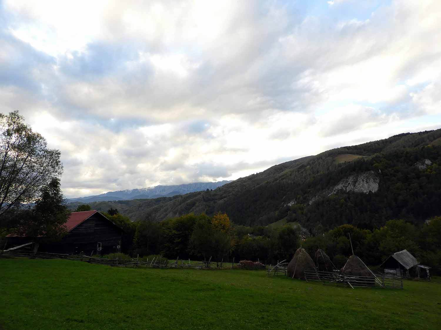 romania-bran-valley-countryside-mountains-forest.jpg