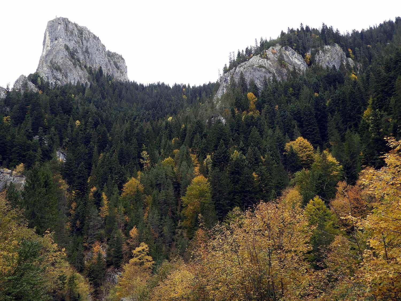 romania-bicaz-gorge-autumn-colors-canyon-mountains.JPG