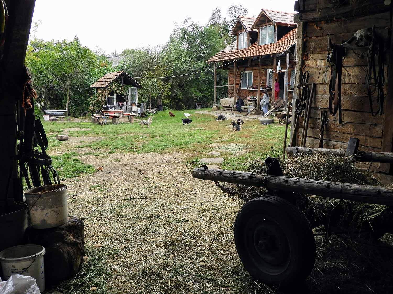 romania-valcele-farm-barn-hay-wagon.jpg