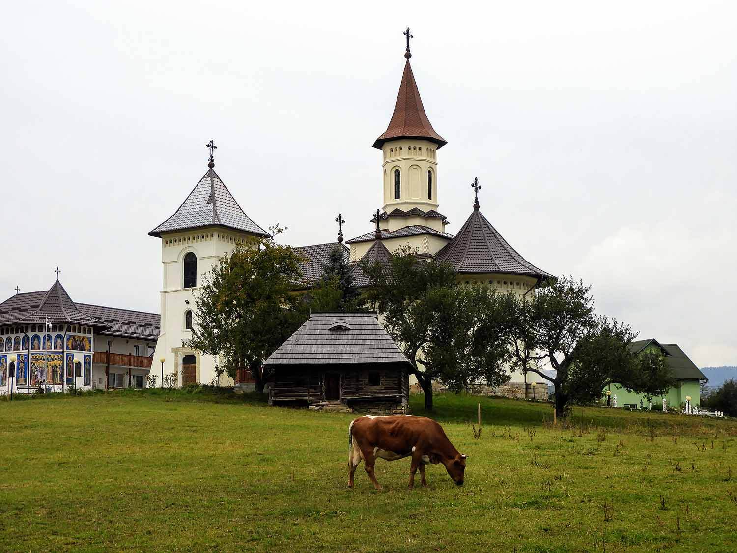 romania-bucovina-humor-painted-monasteries-local-church-cow.jpg