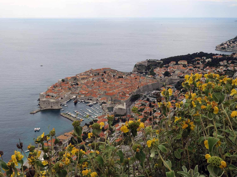 croatia-dubrovnik-harbor-flowers.jpg