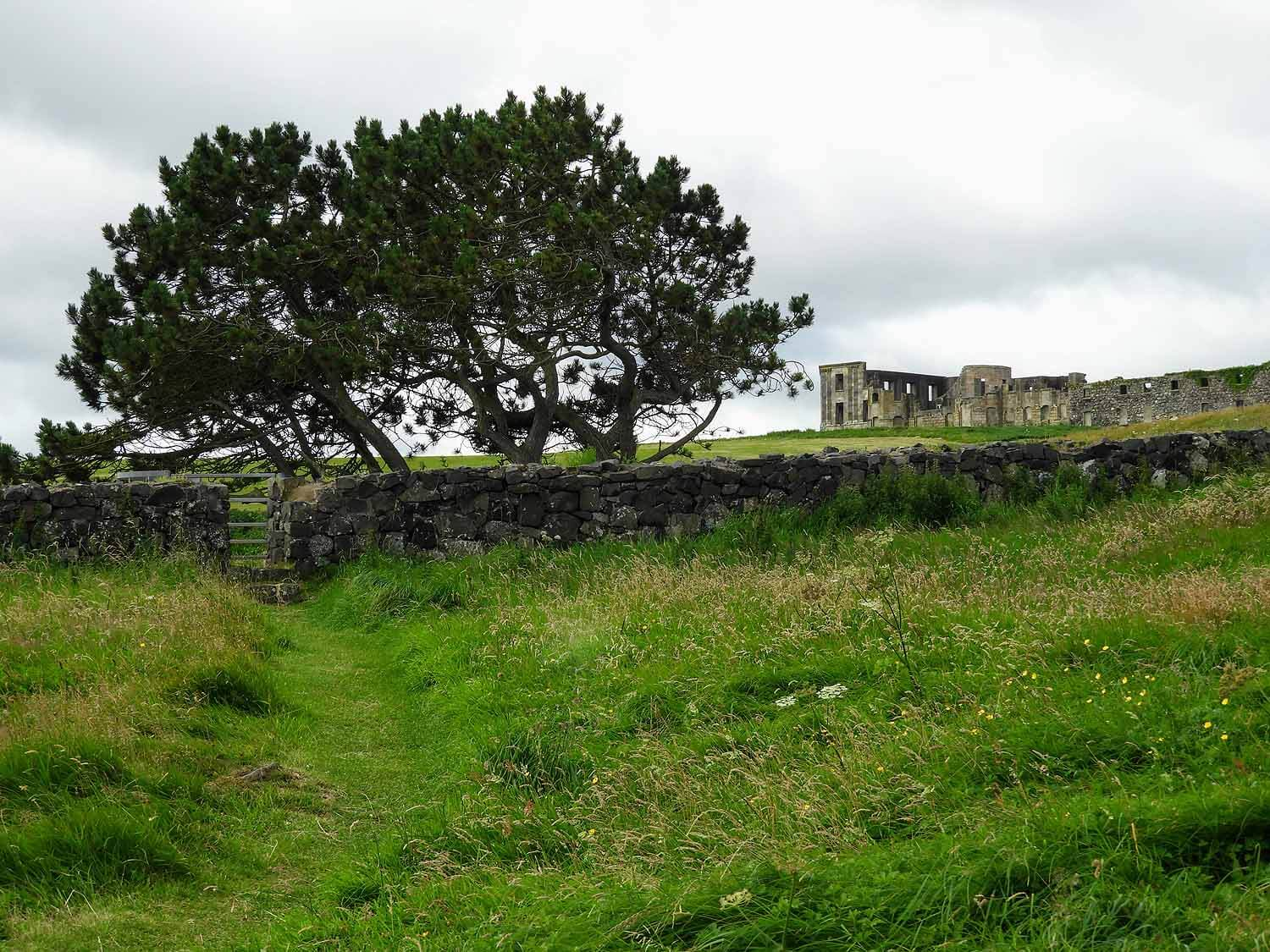 northern-ireland-coast-downhill-demesne-national-trust-tree-ruins-mansion.jpg