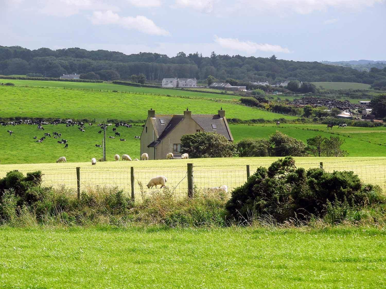 northern-ireland-giants-causeway-north-coast-countryside.jpg