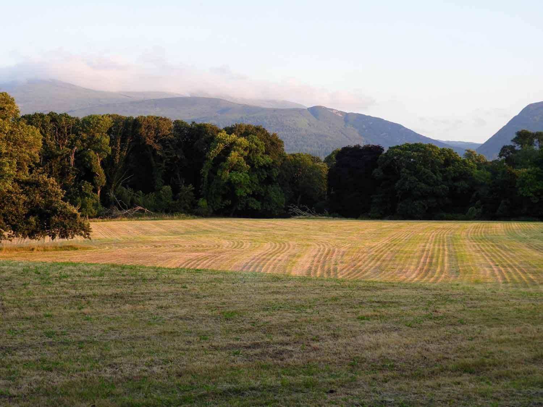 ireland-killarney-field-mountains-national-park.jpg