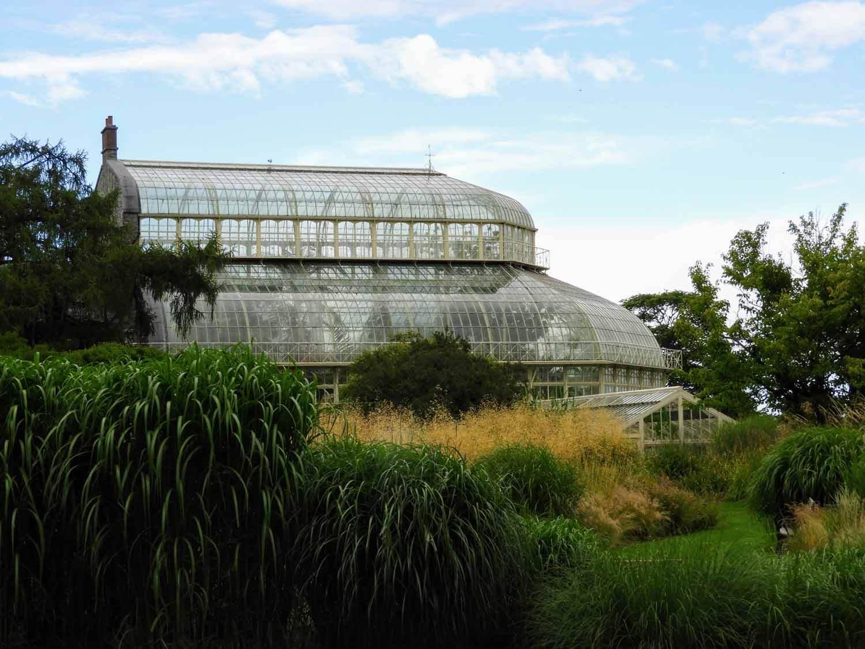 ireland-dublin-botanical-botanic-gardens-greenhouse-conservatory.jpg