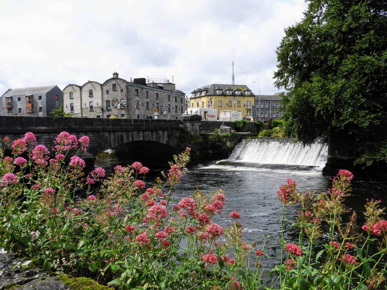 ireland-galway-flowers-waterfall.jpg
