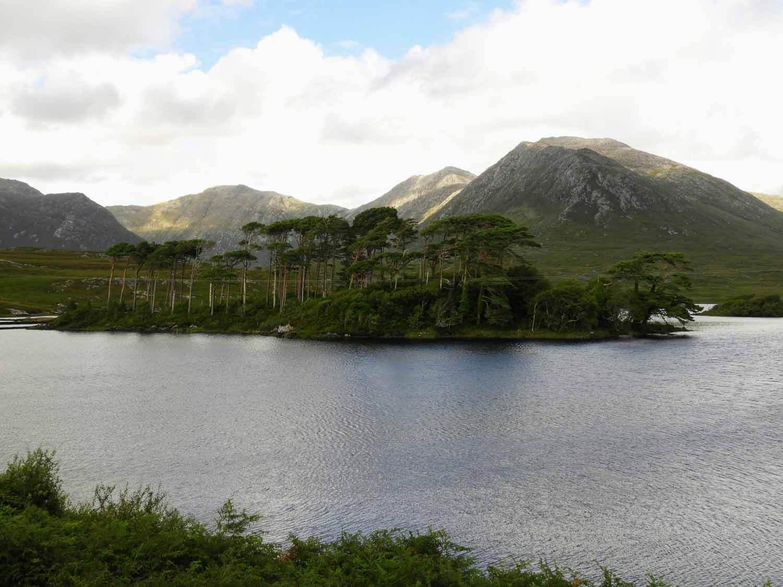 ireland-galway-lake-mountains-island-pines.jpg