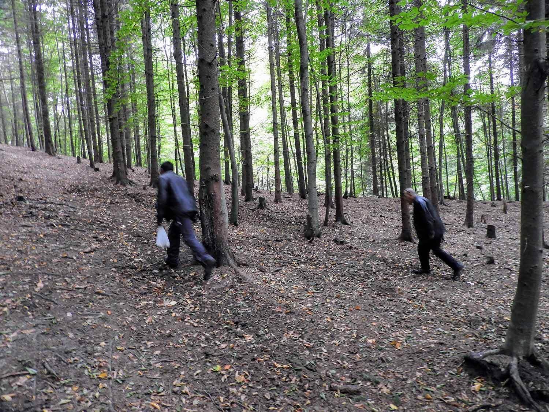 romania-hetea-kastalo-forest-gypsies (4).jpg