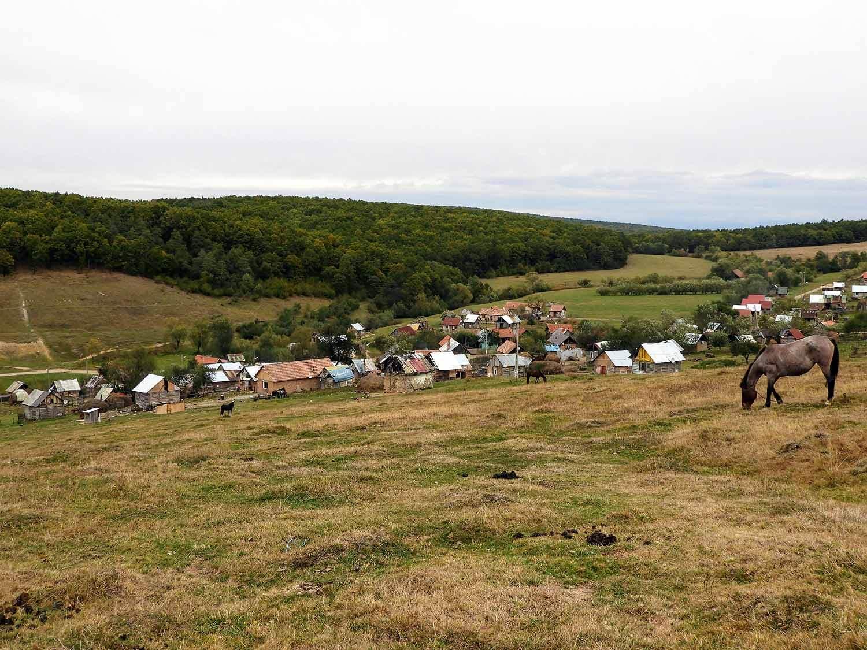 romania-hetea-kastalo-forest-gypsies (7).jpg