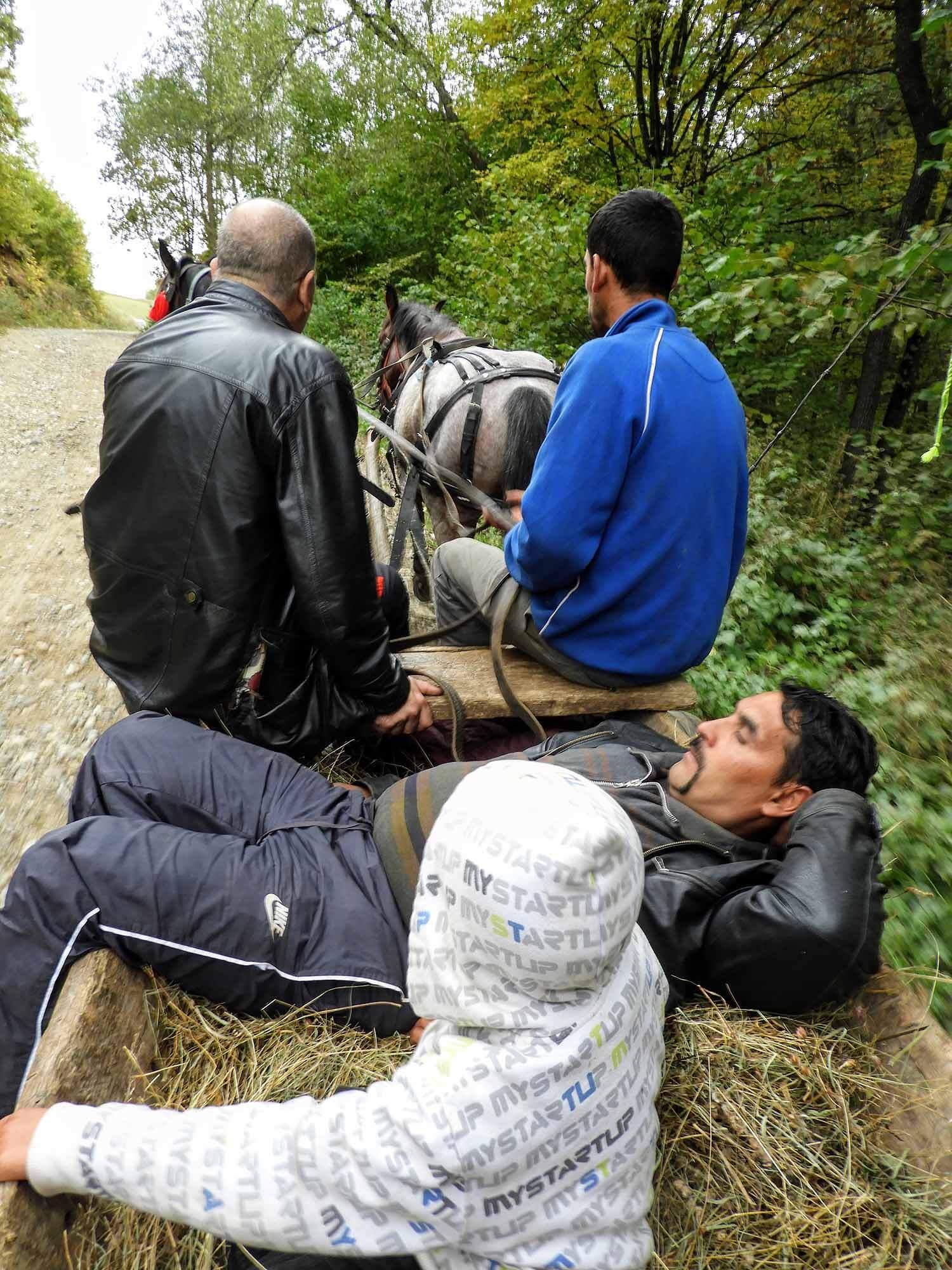 romania-hetea-kastalo-forest-gypsies-wagon-nap.jpg