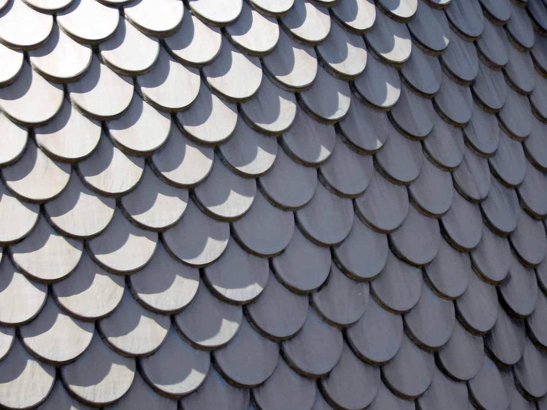 italy-italia-pisa-roof-texture.JPG