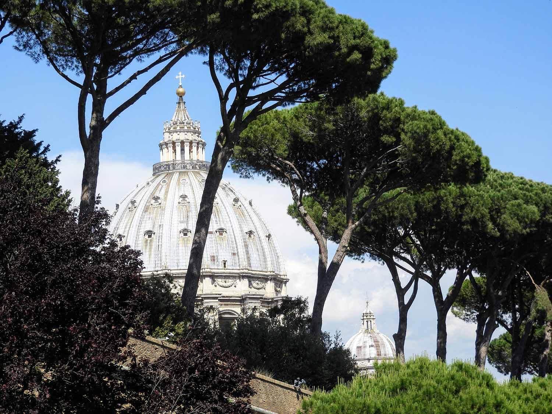 vatican-city-holy-see-italy-italia-rome-stone-pine.jpg