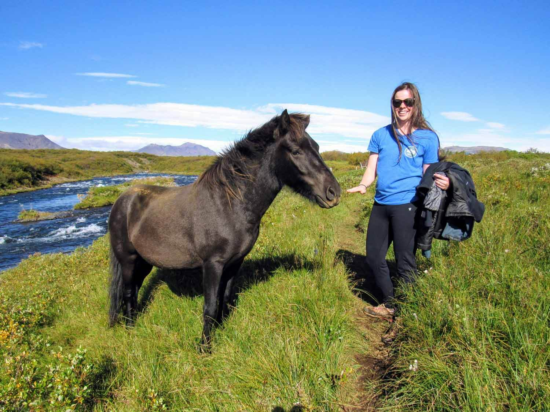 iceland-bruarfoss-poney-wifey.jpg