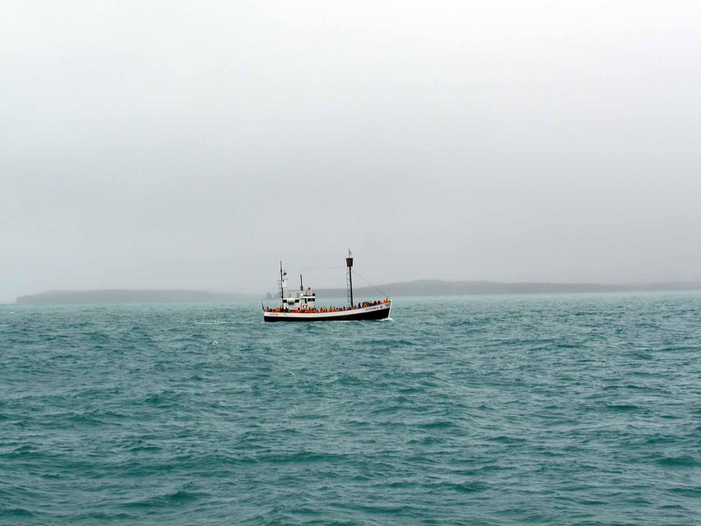 iceland-husavik-whale-watching-boat-tours.JPG