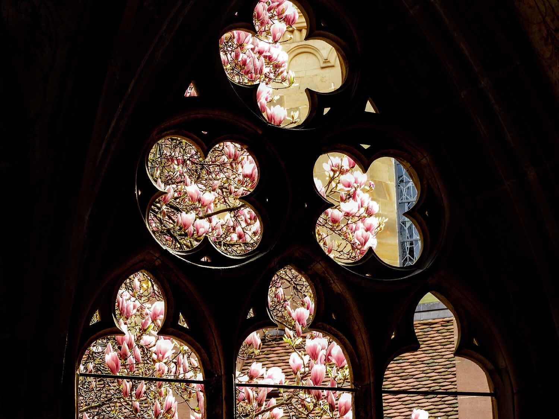 germany-kloster-maulbronn-stone-window.jpg