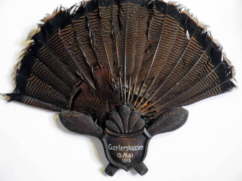 germany-bebenhausen-turkey-fan-tail-feathers.jpg