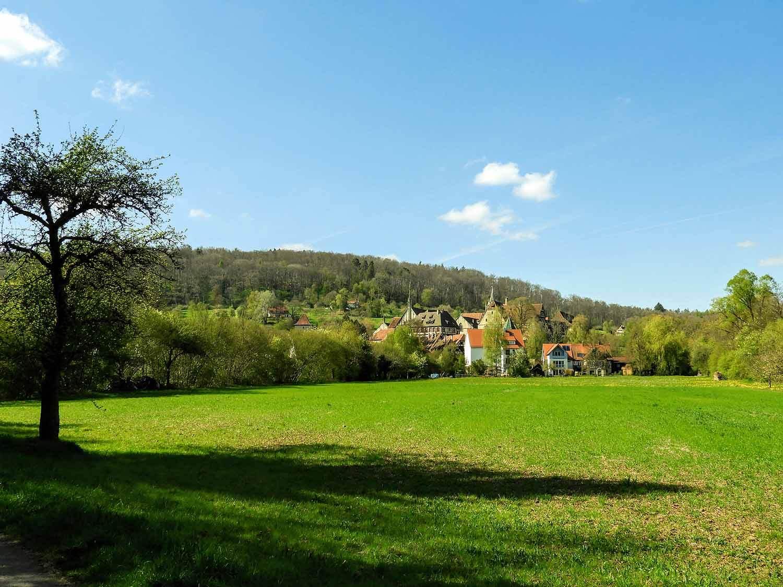 germany-bebenhausen-green-field-village.jpg