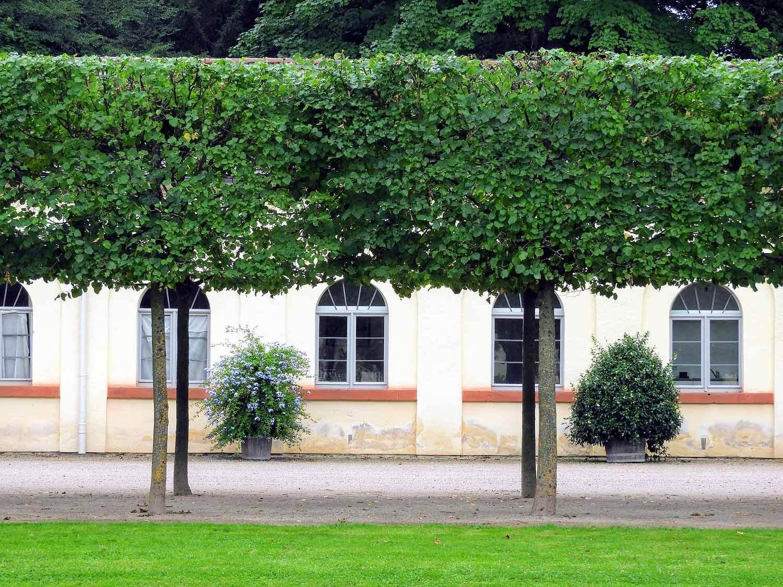 germany-rastatt-schloss-favorite-formal-gardens.jpg