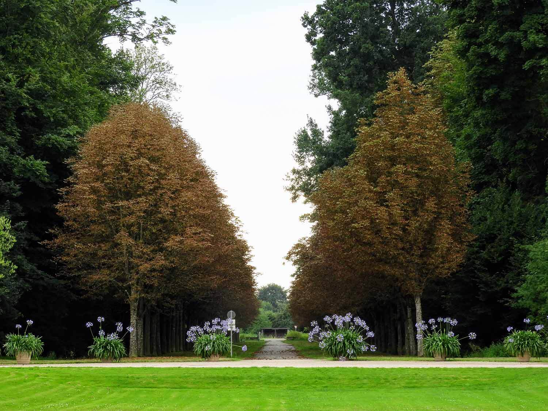 germany-rastatt-schloss-favorite-gardens-formal-trees.jpg