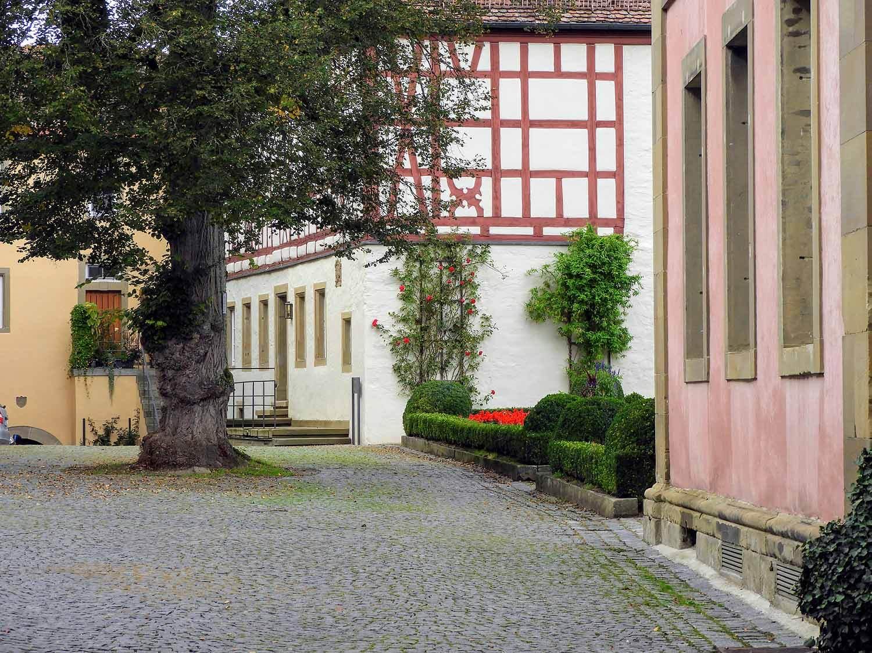 germany-kloster-grosscomburg-courtyard-tree.jpg