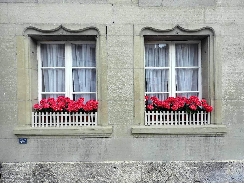 switzerland-fribourg-widow-flower-boxes.jpg