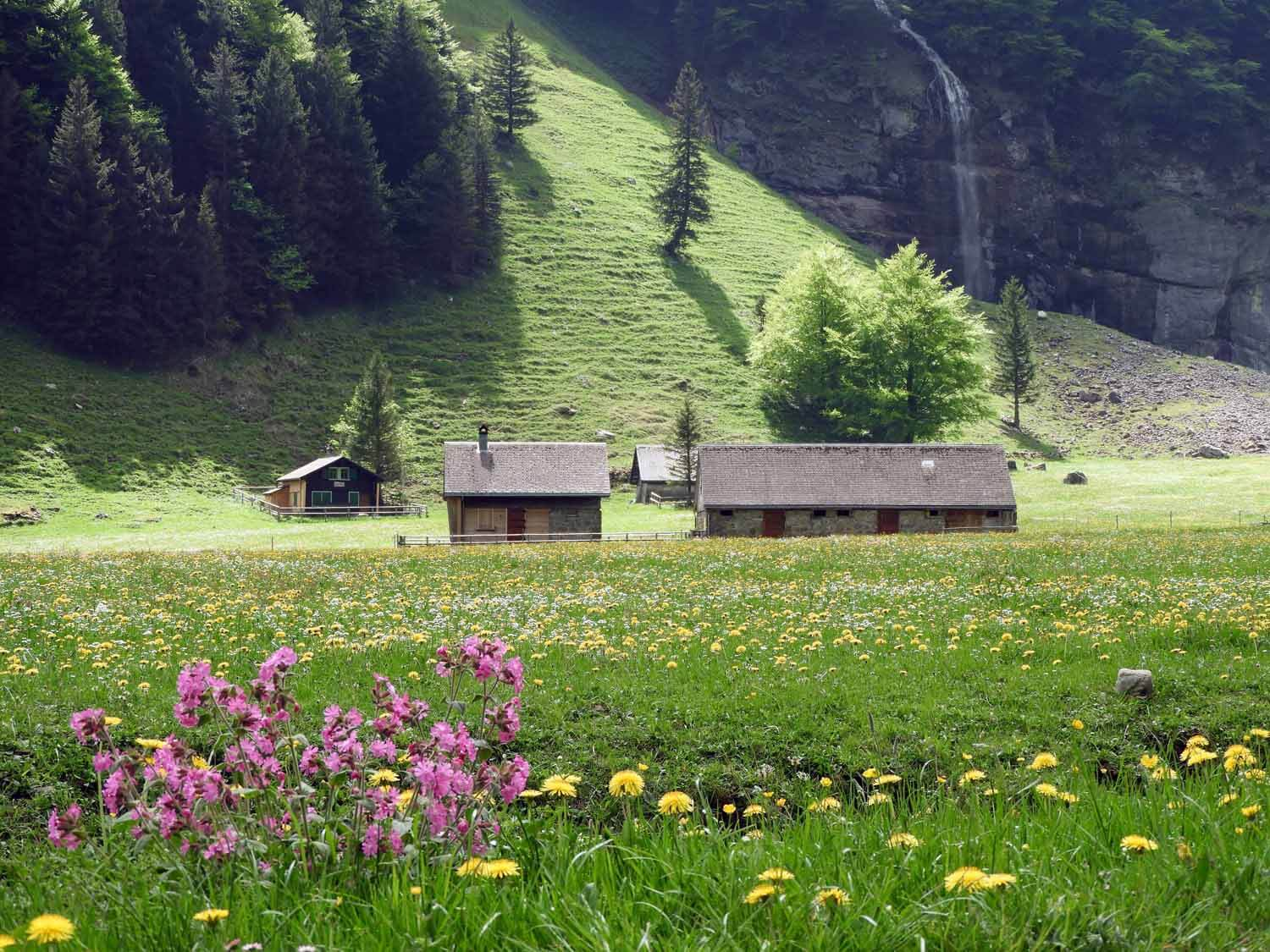 switzerland-ebenalp-seealpsee-valley-waterfall.JPG