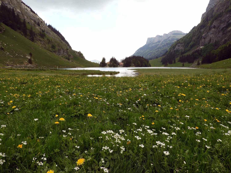switzerland-ebenalp-seealpsee-lake-spring.JPG