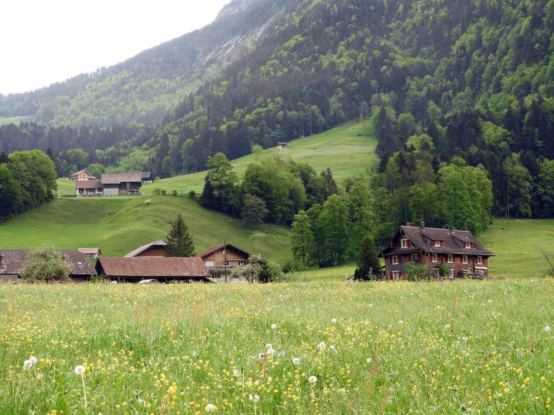 switzerland-engelberg-countryside.JPG