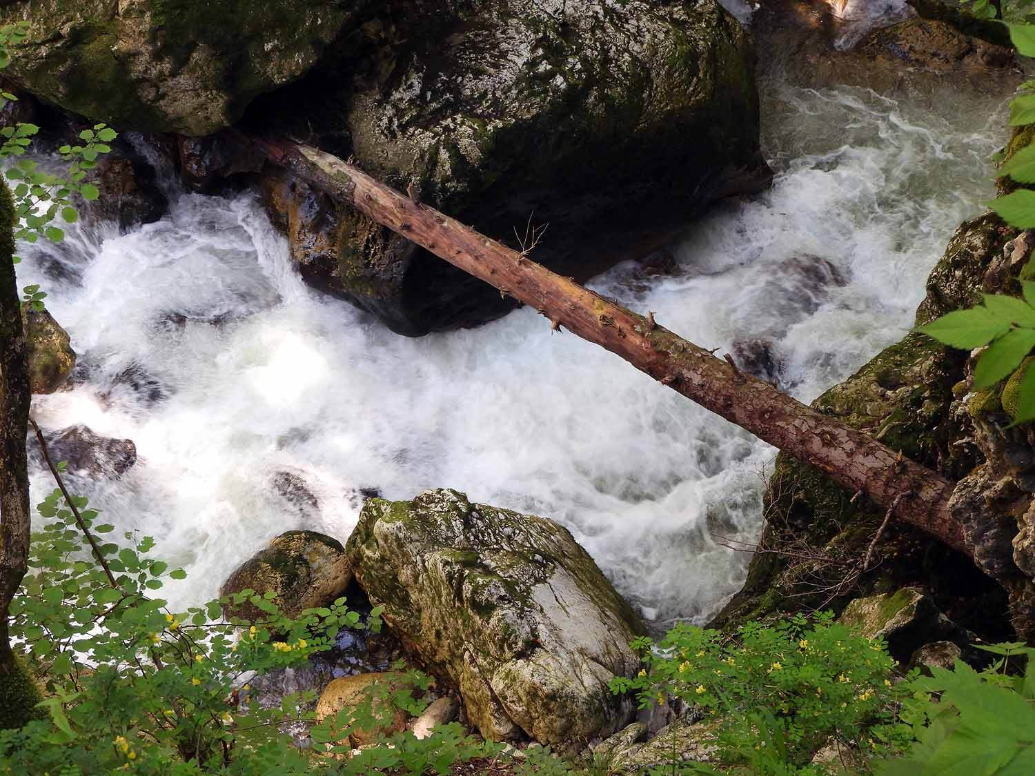 switzerland-saut-pont-brot-hike-walk-hiking-river-waterfall.JPG