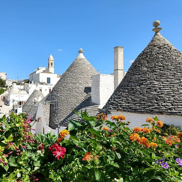 We found these i(conical) houses to be #trulli amazing!  These rural dwellings have been used for centuries. We loved to see the various pinnacles and white washed symbols.  #maiastra #maiastratravel #maiastralife #puglia #italy🇮🇹 #apulia