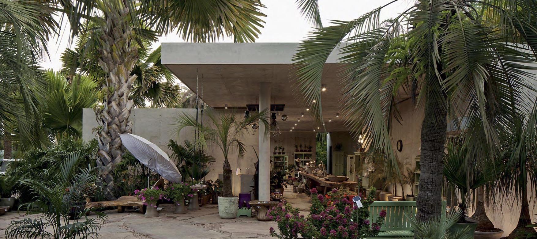 Loga Botanica by Rizoma Arquitetura at the Inhotim Institute