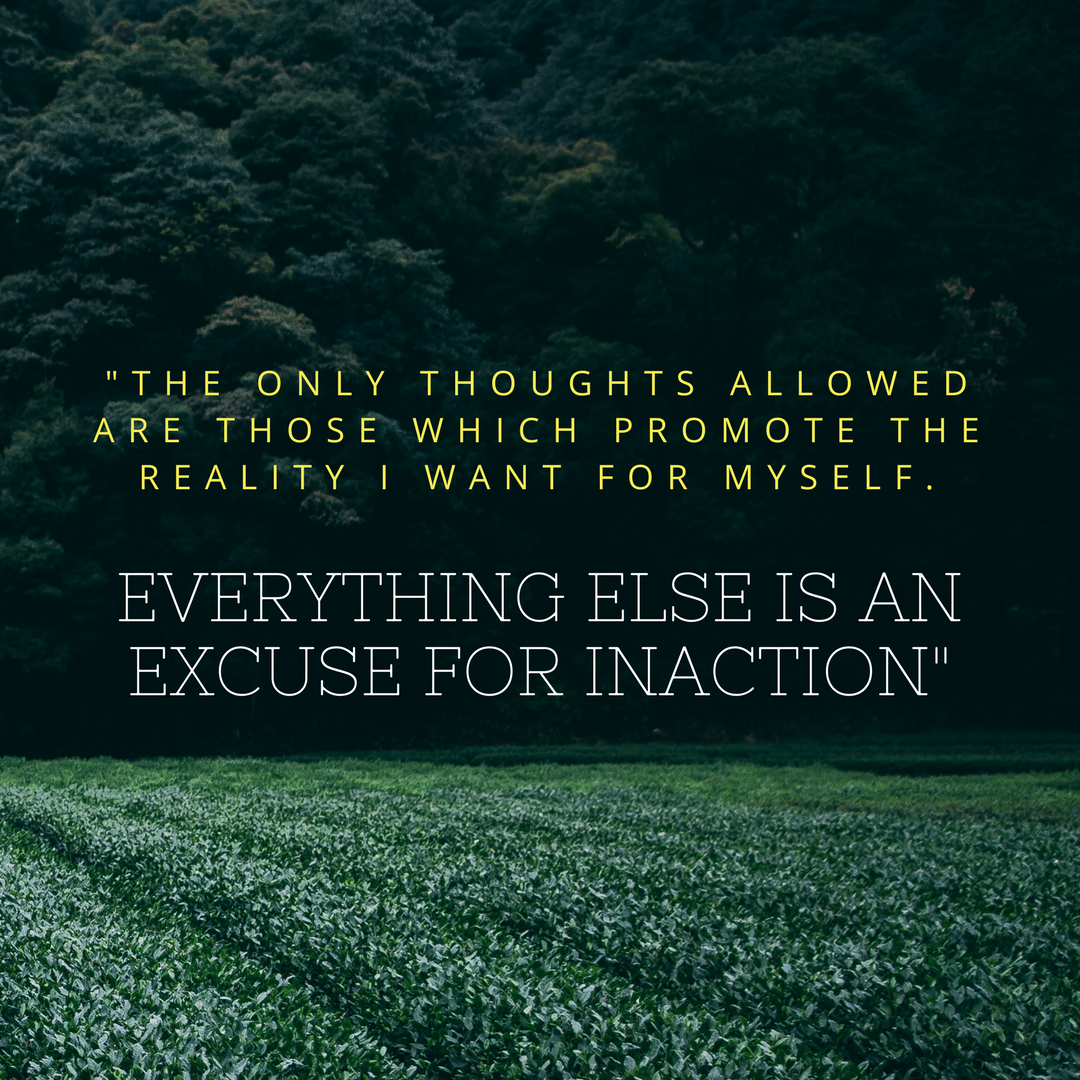 EVERYTHING ELSE IS AN EXCUSE FOR INACTION_.png