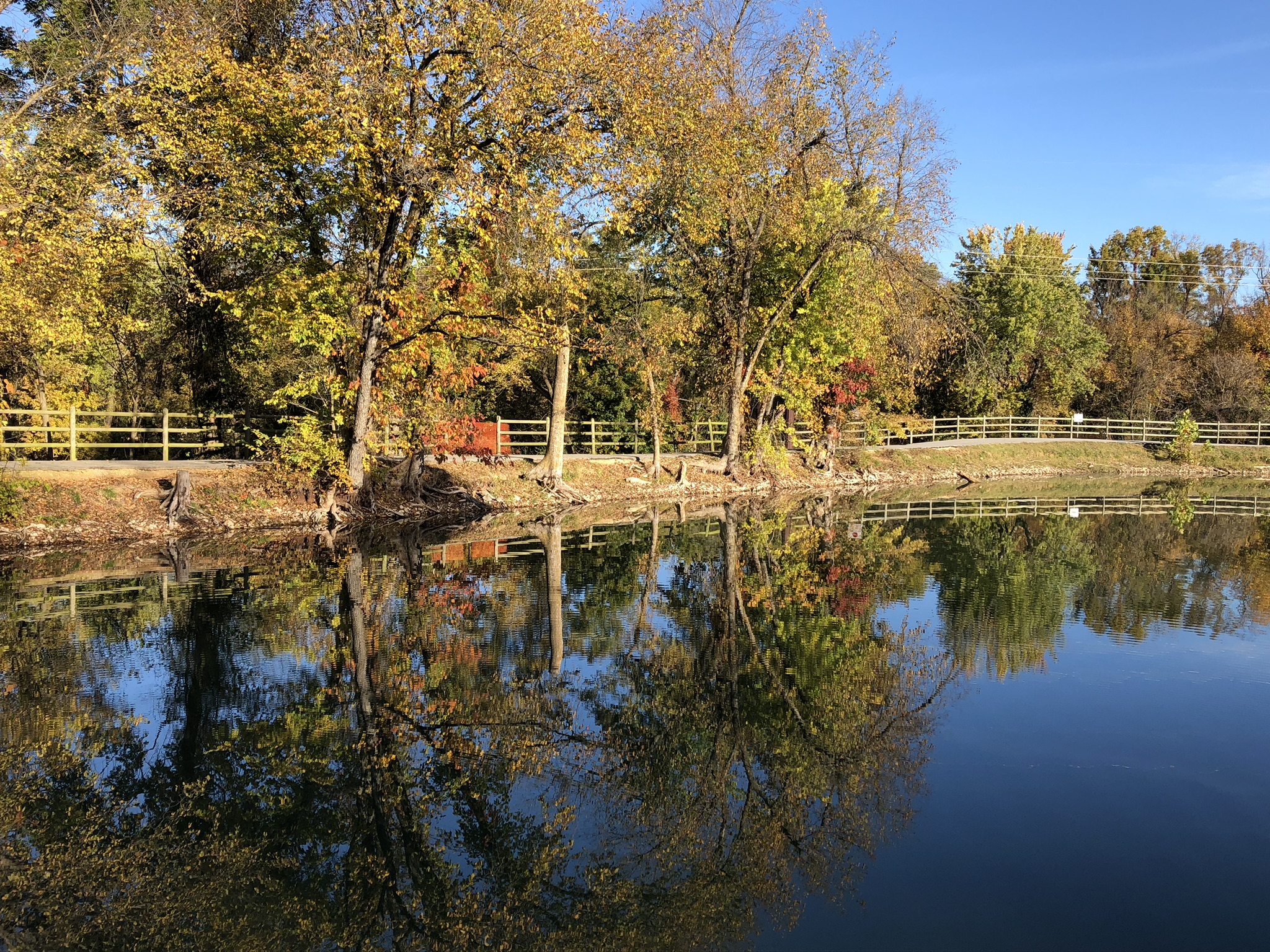 Lake Springdale, one of the scenic views on the Razorback Regional Greenway trail.  Photo credit:  Denise Grindstaff