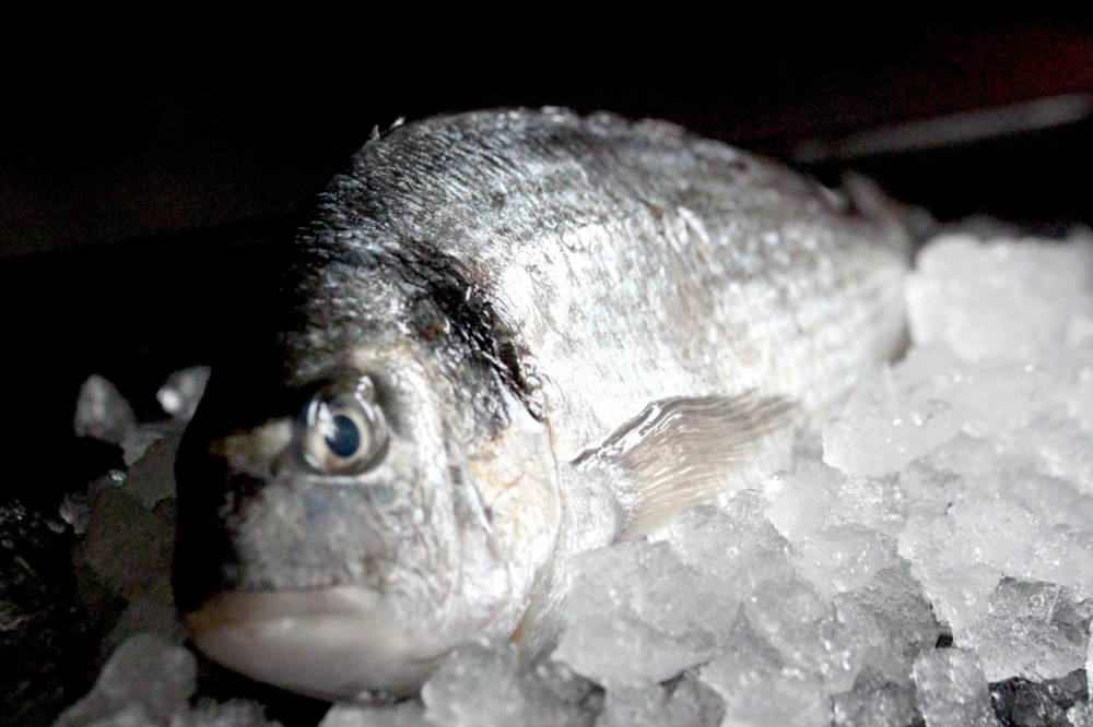 warm water fish - Bass (farmed): £12.10Bass (wild): £19.50Gilt-head bream: £10.78Grey mullet: £9.90Red mullet: £19.50Red snapper: £18.70