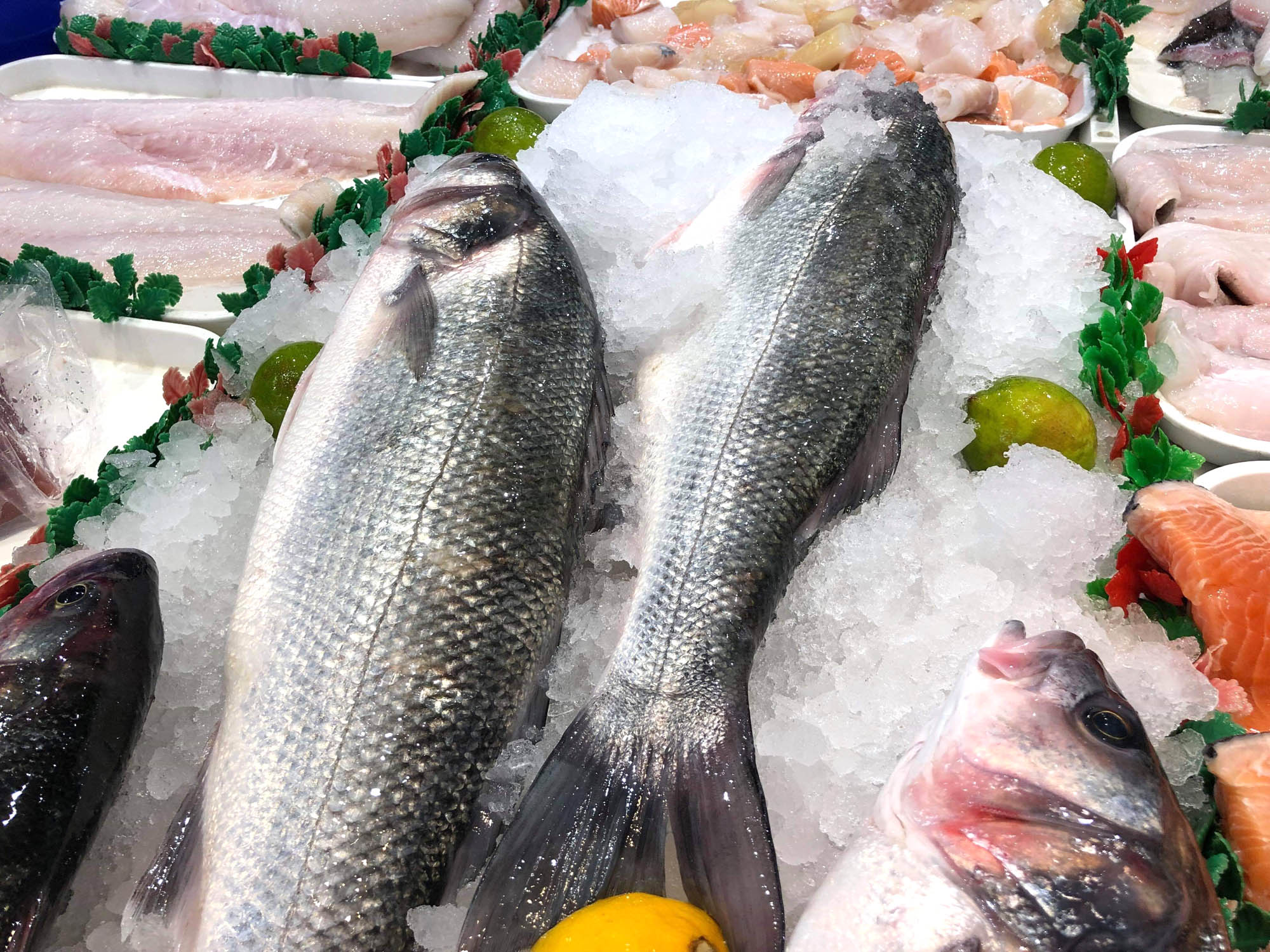 Local bass: take off the fillets and pan fry in butter until the skin is crispu and the flesh flakes. Hard to beat.
