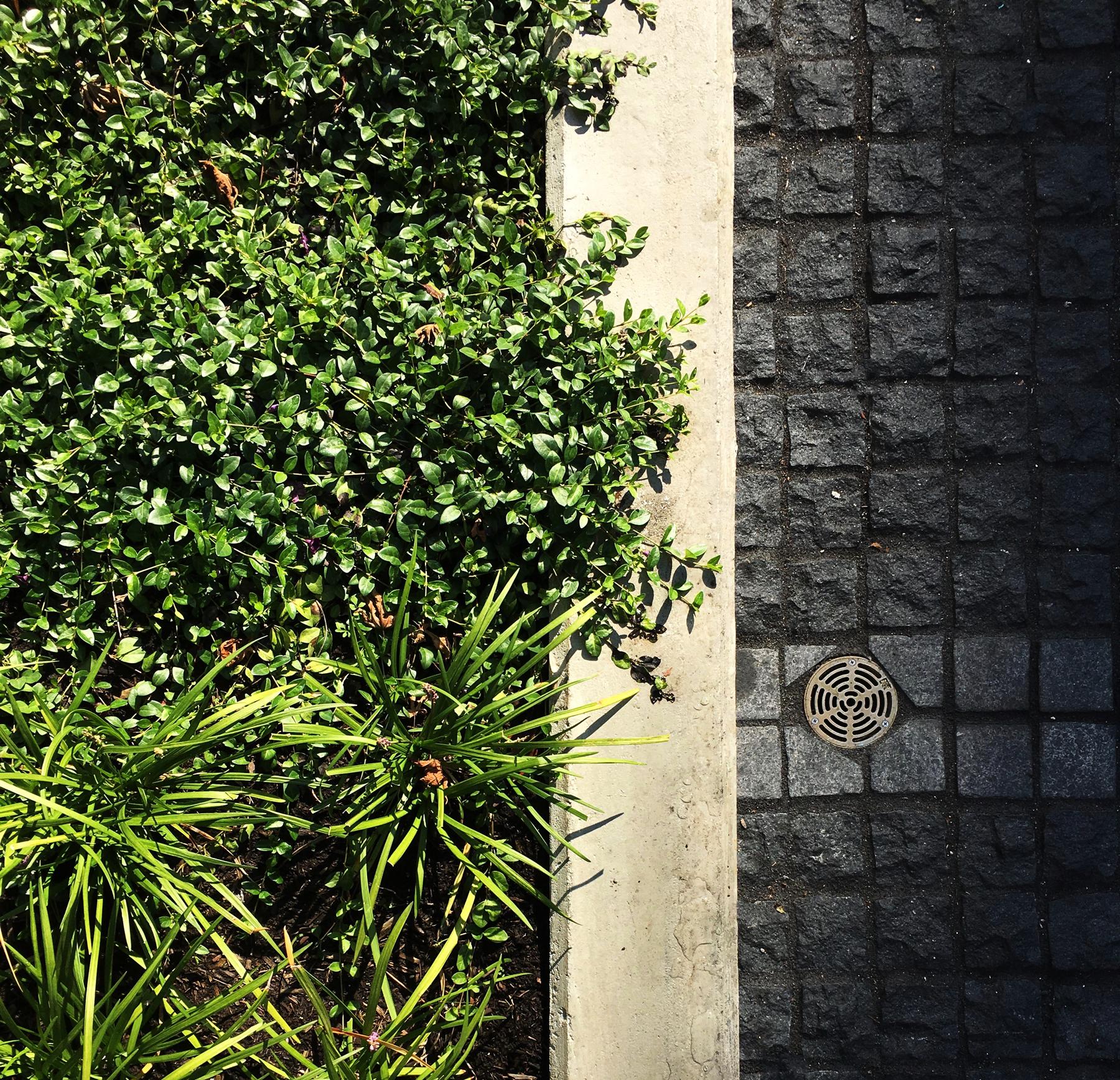 new-jubilee-house-considered-design-inc-005.jpg