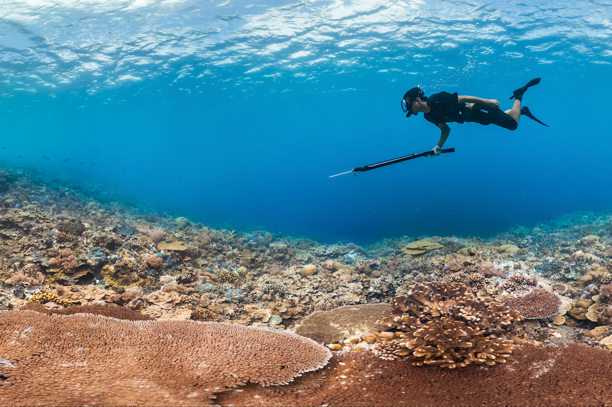 People & the Reef -