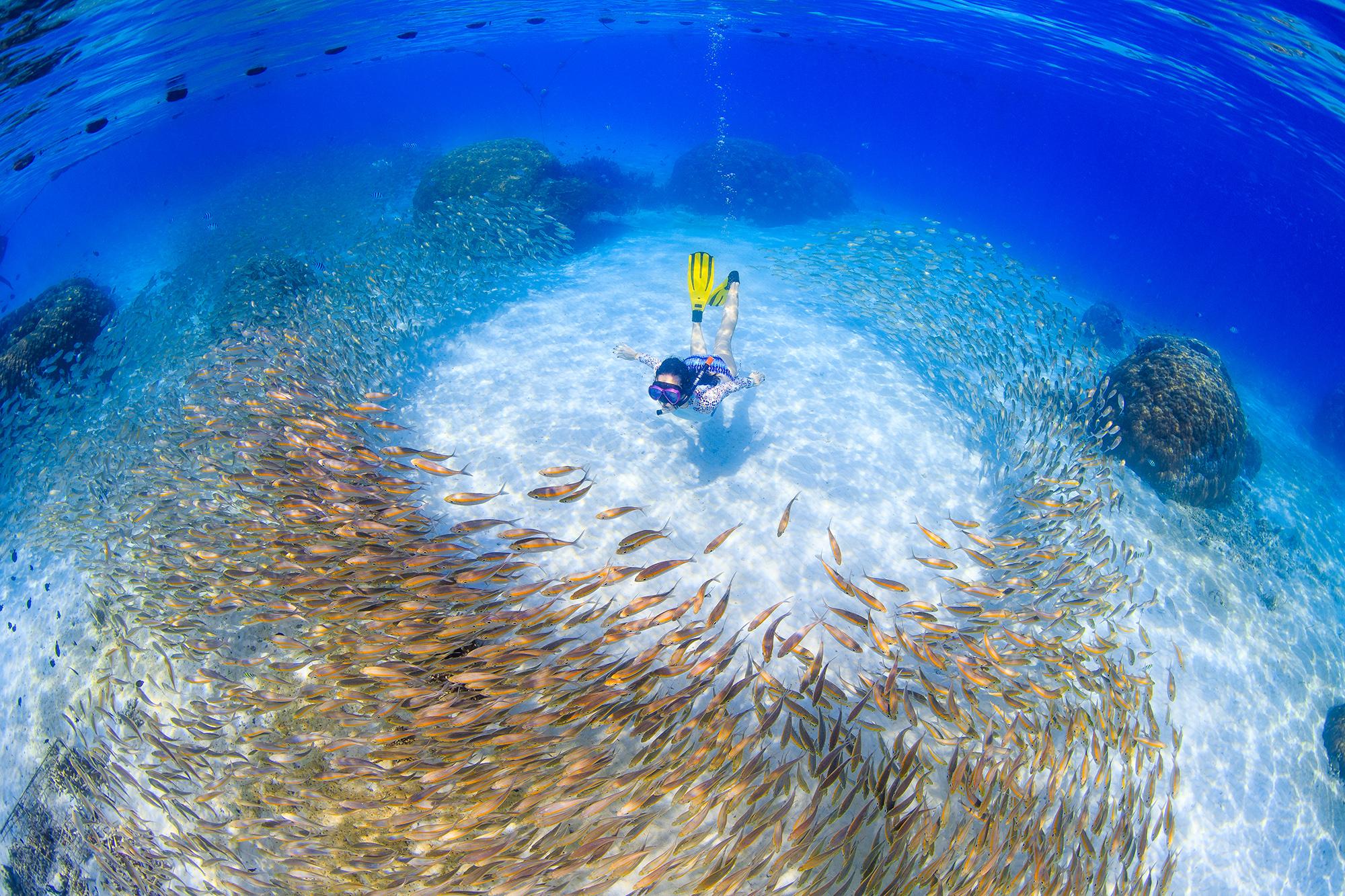 A SNORKELER in Lang Tengah Island,Malaysia CREDIT: YEN-YI LEe / coral reef image bank