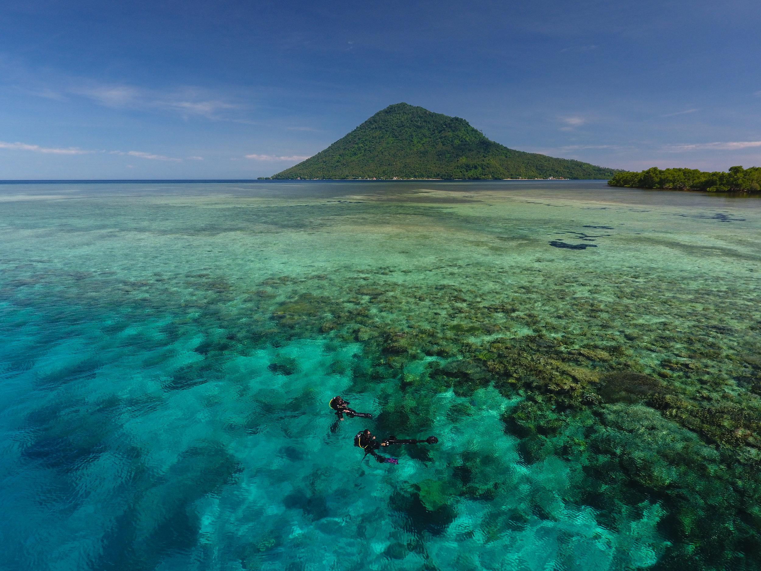 13 - two scientists survey a healthy reef in manado CREDIT: The Ocean Agency / paul g. allen philanthropies