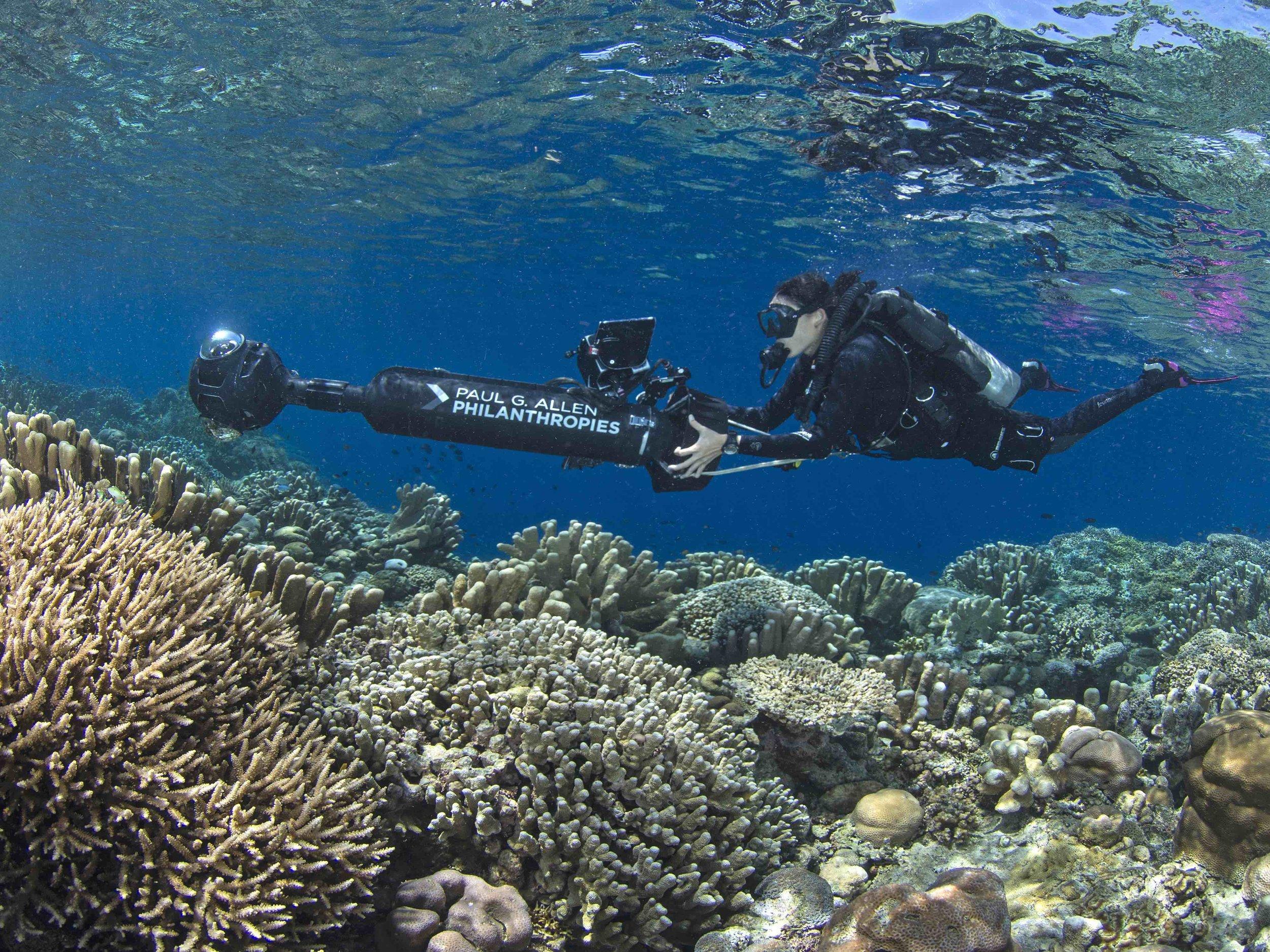 05 - A scientist SURVEYS A CORAL REEF CREDIT: The Ocean Agency / paul g. allen philanthropies